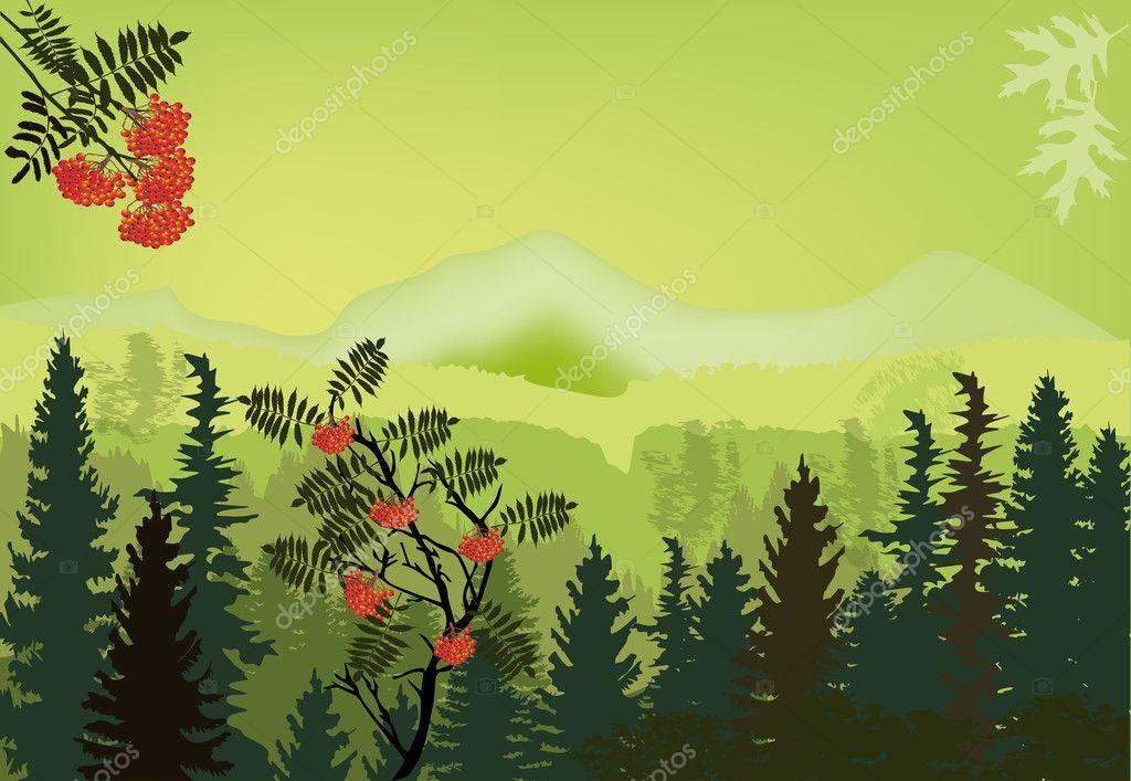 rowan tree in green mountains