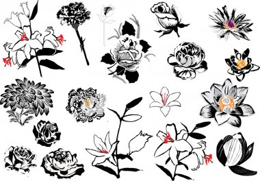 flower sketches collection isolated on white