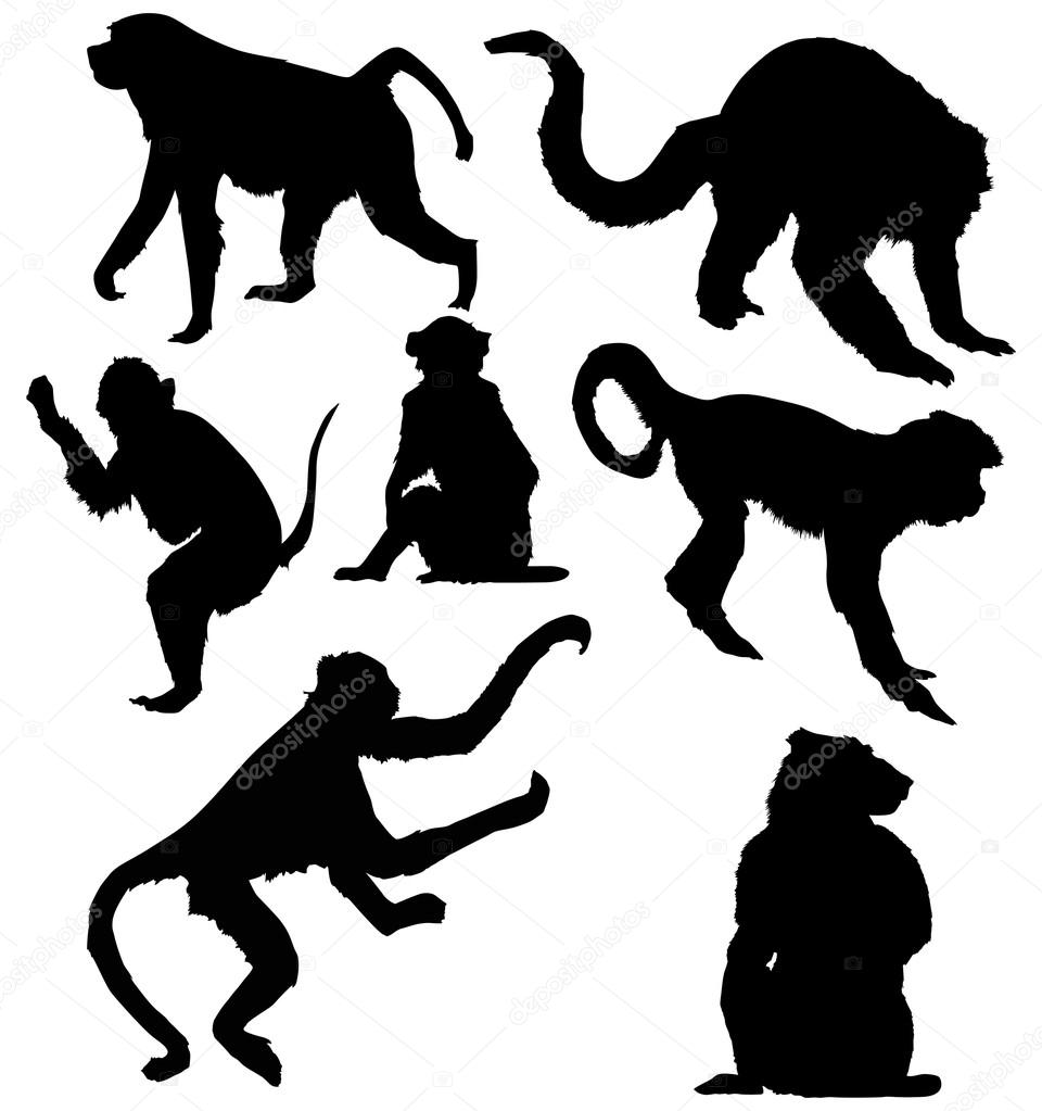Stock Vector Dr Pas 6261329: Seven Isolated Monkey Silhouettes