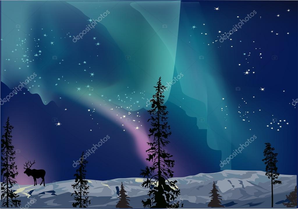 illustration with deer at aurora borealis