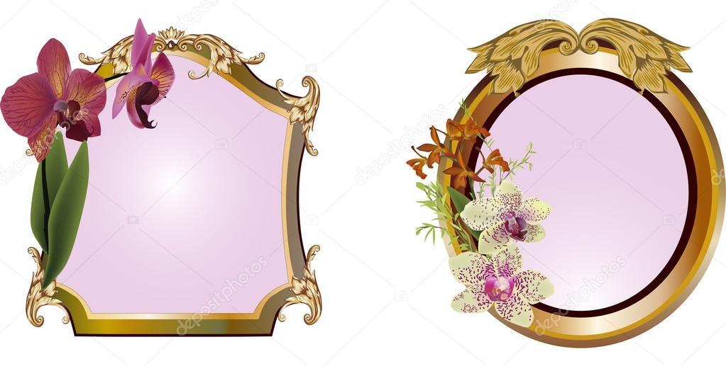 dos marcos con orquídeas en blanco — Vector de stock © Dr.PAS #34803881