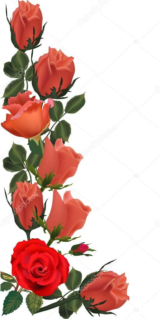 Diseno De Rosas Naranjas Vector De Stock C Drpas 34851869 - Diseos-de-rosas