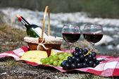 červené víno, sýr a hrozny podávané na pikniku. údolí Verzasca