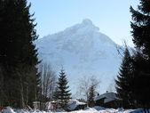 Alpské pohled nové arvenbuel, Švýcarsko