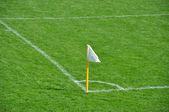 Fényképek focipálya