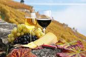 Két wineglasses, a sajt és a szőlő szőlő a teraszon