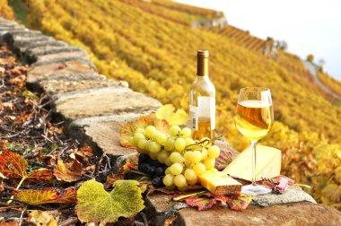 Wineglass and a bottle on the terrace vineyard in Lavaux region,