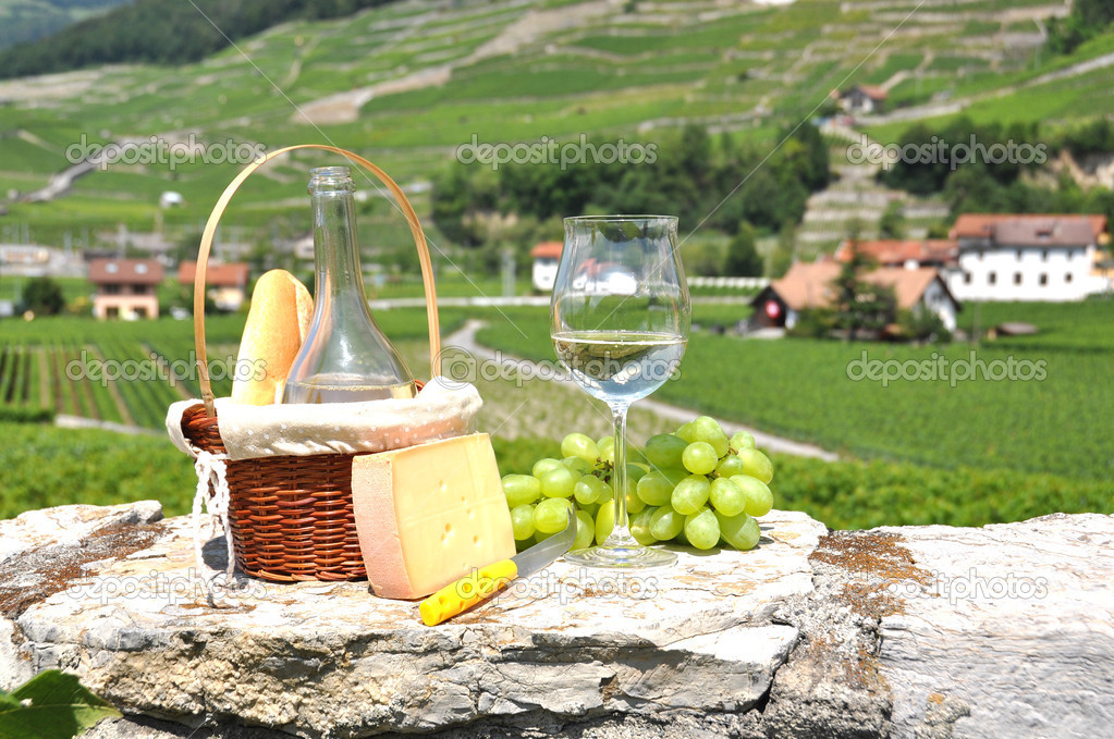 Wine, grapes and cheese against vineyards