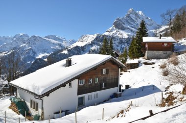 House in Braunwald
