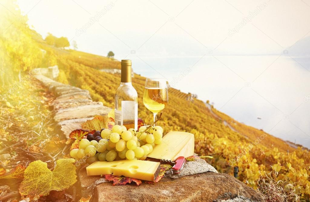 Red wine and grapes on the terrace of vineyard