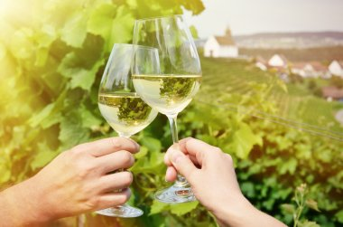 Wineglasses against vineyards