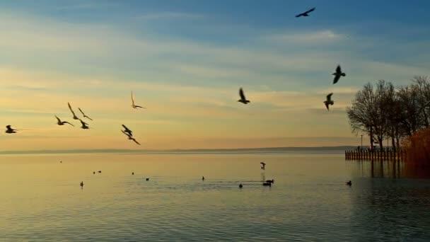 Gyönyörű napkelte a Balaton felett