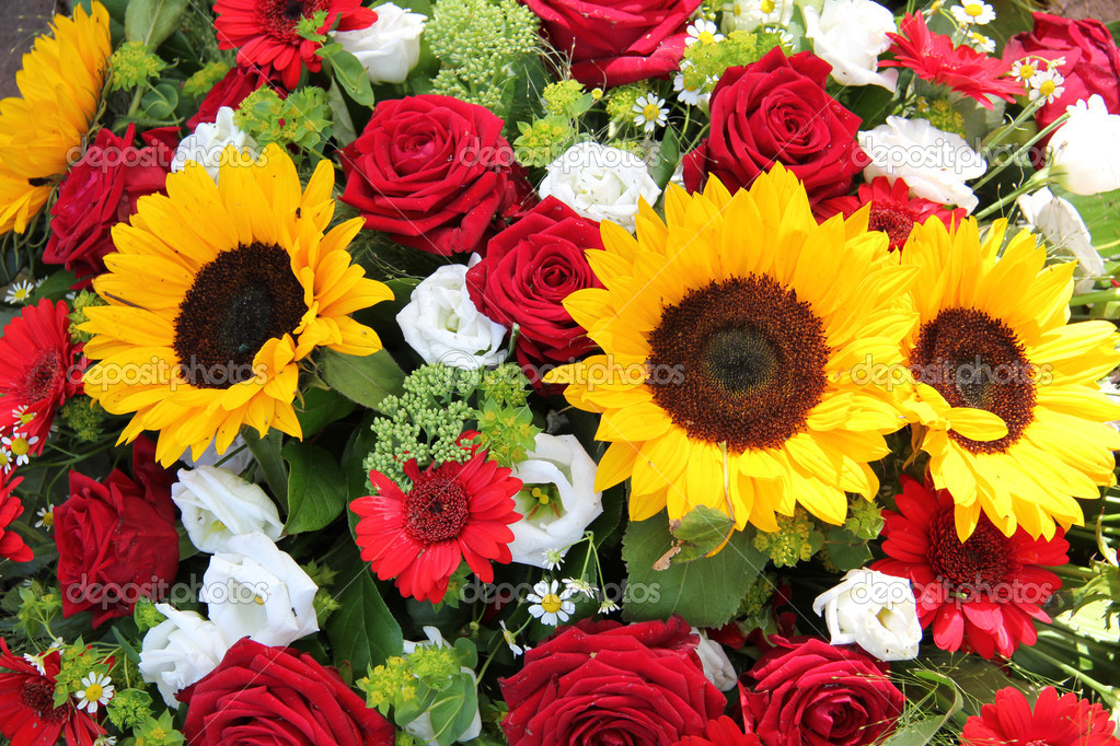 Images Sunflowers And Roses Impremedia Net