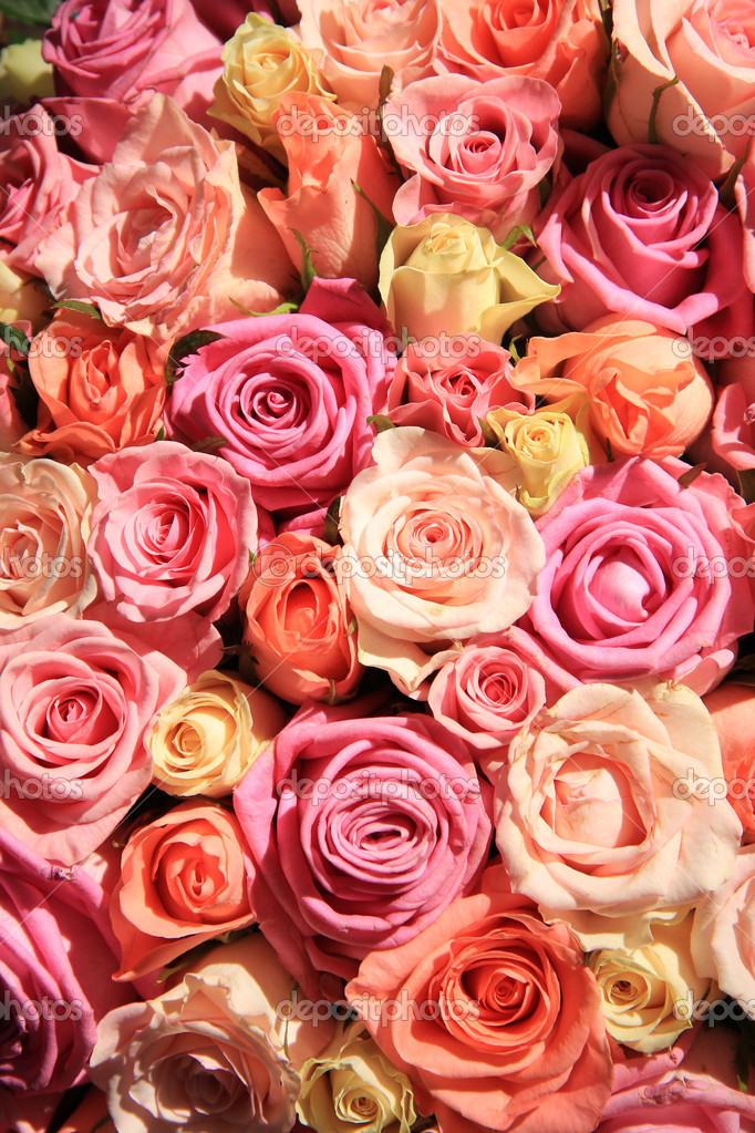 Roses in different shades of pink, wedding arrangement — Stock Photo ...