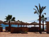 Fotografie slunečník na pláži