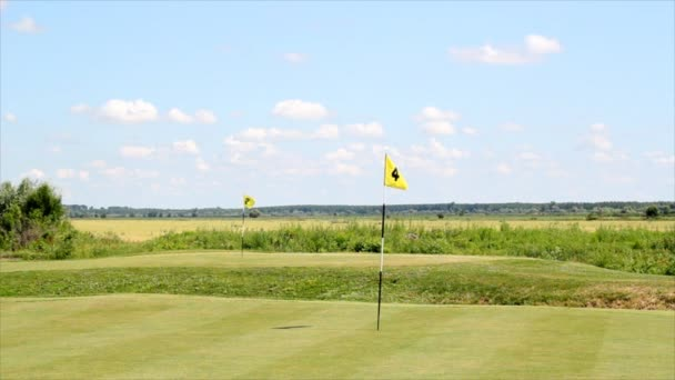 Golf course with two yellow flags