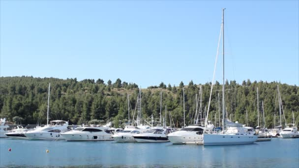 Yacht és csónakok