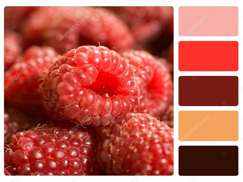 chantillon de palette de couleur rouge framboise photographie redpixel 30106005. Black Bedroom Furniture Sets. Home Design Ideas