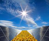 solární elektrárna - fotovoltaika