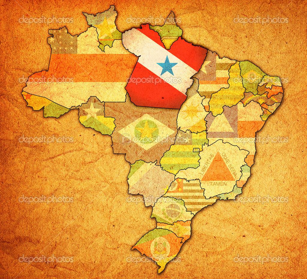 ブラジル地図パラ州 — ストック...