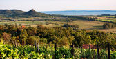 Krajina u jezera balaton v západu slunce, Maďarsko
