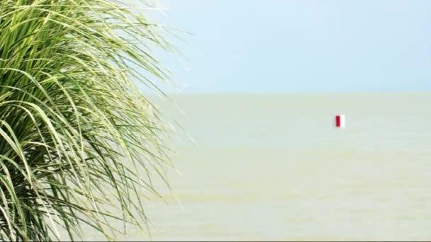 Mediterrán jelenet a Balatonnál