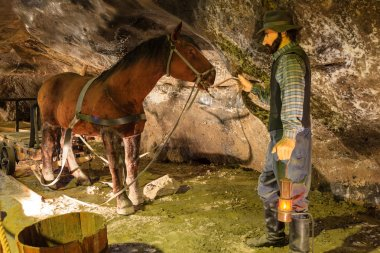 Miner and horse in the Wieliczka Salt Mine, Poland.