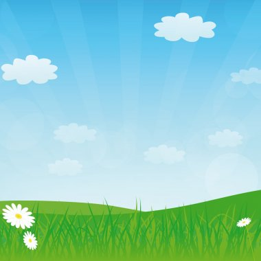 Vector spring or summer background