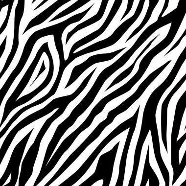 Zebra pattern as a background, vector