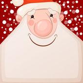 Fotografie Smiling Santa Claus