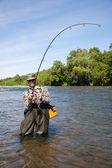 Örömteli Halász húzza fogott lazac