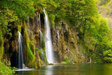 Waterfall stock vector
