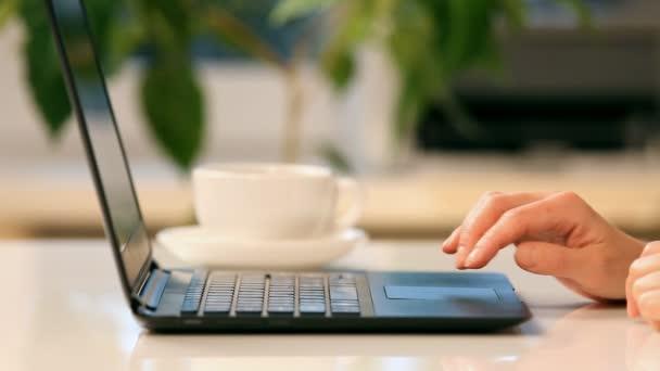Frauenhände und Laptop