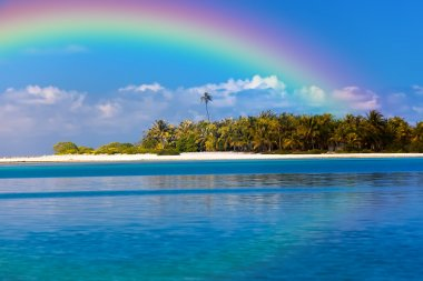 The tropical island with palm trees in the ocean and a rainbow over it