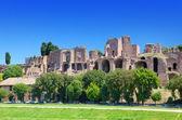Circus maximus. ruiny patrová hill, Řím, Itálie.