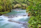 Photo Jamaica. Dunns River waterfalls
