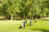 profesionální golfové vybavení