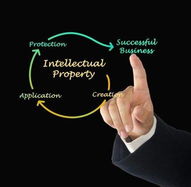 Intellectual property diagram
