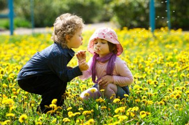Boy and girl in summer flowers field