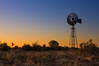 Lovely sunset in Kalahari with windmill and grass