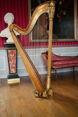 Ancient harp in the stylish interior