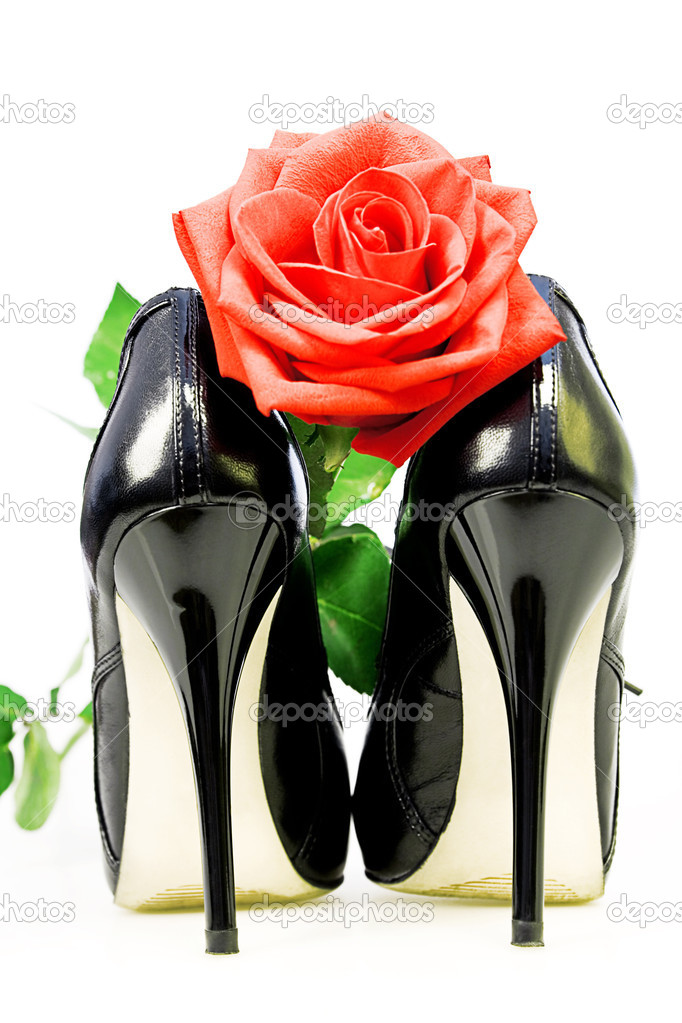 Lady shoes and red rose on a white