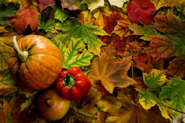 Colorful leaves and vegetables