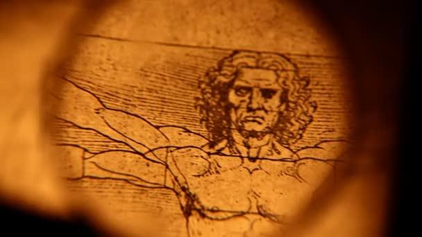 Anatomía de Leonardo da vinci — Vídeo de stock © janaka #32655553