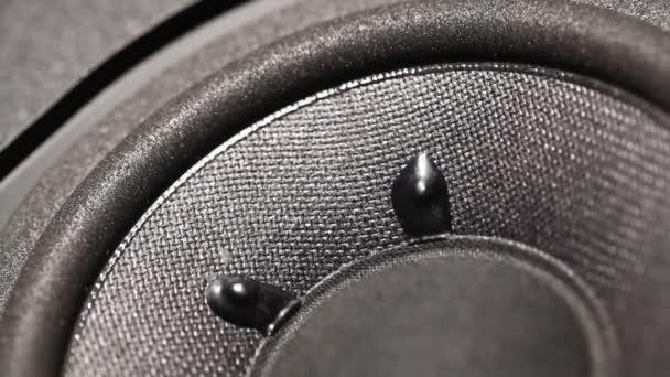 Audiowoofer