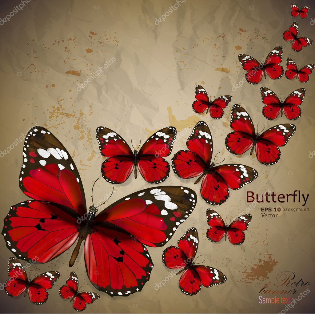 butterflies wallpaper iphone