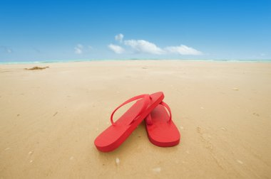 Red flip flops on the beach