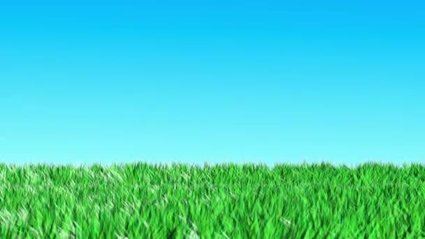 Grass loop animation