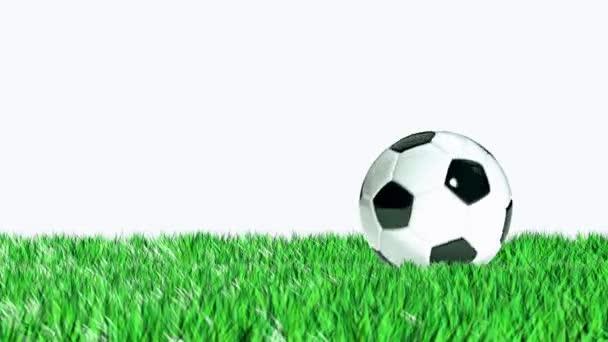 fotbalový míč do rámu