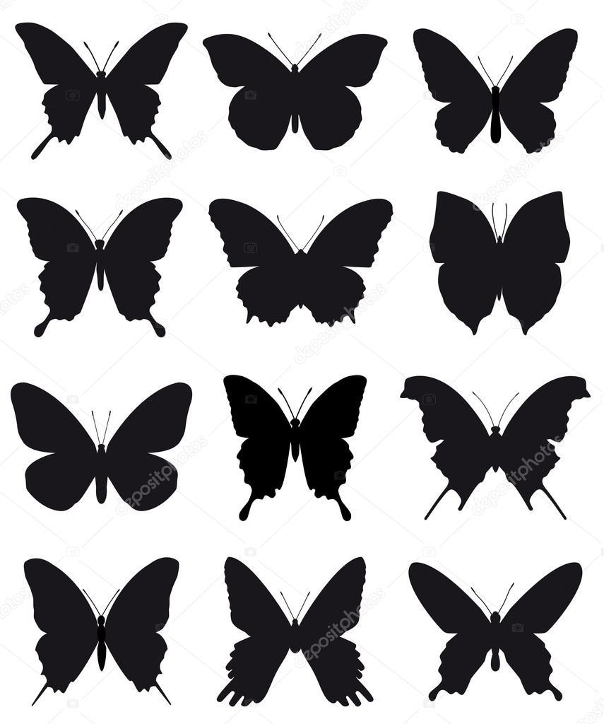 belles silhouettes de papillons pour ornement et dessin sur fond blanc image vectorielle. Black Bedroom Furniture Sets. Home Design Ideas
